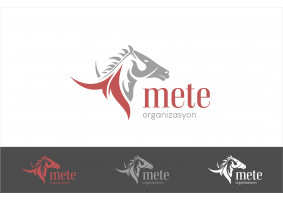 METE ORGANİZASYON - nslhnkr