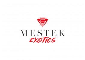 Mücevher Tasarım Firmasına Logo - mgyknt